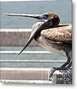 Pelican Yawn - Digital Painting Metal Print