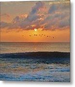 Pelicans At Sunrise 9 10/18 Metal Print