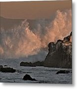 Pelicans In The Dawn Metal Print