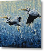 Pelicans Metal Print by Ned Shuchter