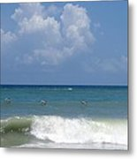 Pelicans Over The Ocean Metal Print
