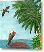 Pelicans Palm Trees Tropical Birds Cathy Peek Metal Print