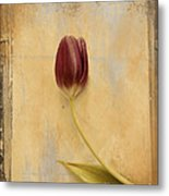 Penchant Naturel 03bt03c Metal Print by Variance Collections