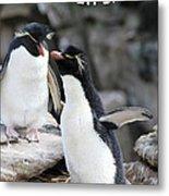 Penguin New Baby Card Metal Print