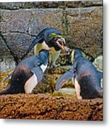 Penguin Talk Metal Print