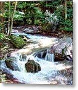 Pennsylvania Creek Metal Print