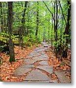 Pennsylvania Hiking Trail Metal Print