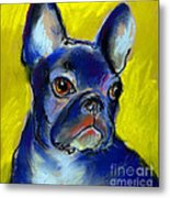 Pensive French Bulldog Portrait Metal Print by Svetlana Novikova