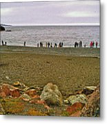People Lined Up To Catch Capelin On The Shore Of Middle Cove-nl Metal Print