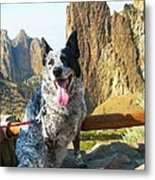 Pepper At Smith Rock Metal Print