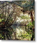 Pepper Creek Metal Print