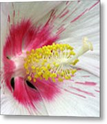 Peppermint Flame 01 Metal Print