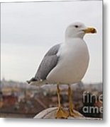 Perched Above Metal Print