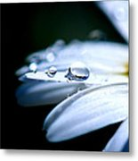 Perfect Drop Metal Print