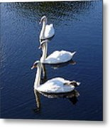 Perfect Family Gathering Metal Print