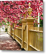 Perfect Time For A Spring Walk Metal Print