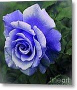 Periwinkle Rose Metal Print