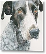 Pet Portrait Dog Art Print Hire Commission Pet Portrait Artist Metal Print