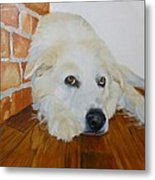 Pet Portrait Great Pyrenees Original Oil Painting On Canvas 10 X 10 Inch Metal Print