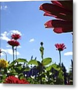 Petal Nation Metal Print