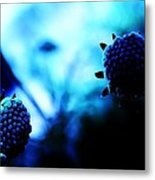 Petalless Metal Print