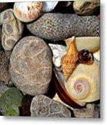 Petoskey Stones Ll Metal Print