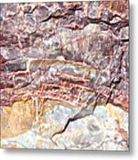 Petrified Rings Metal Print