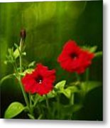Petunia Dreams In The Woods Metal Print