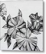 Petunias Metal Print