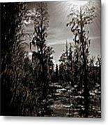 Phinizy Swamp Metal Print