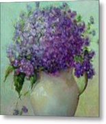 Phlox          Copyrighted Metal Print