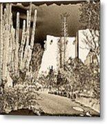 Phoenix Botanical Garden Path Metal Print
