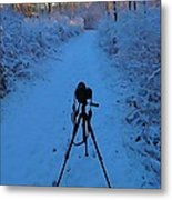 Photography In The Winter Metal Print