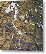 Pickerel Fish Run In Stream Metal Print