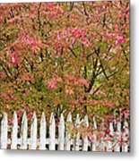Picket Fence Fall Metal Print