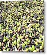 Picking Olives Metal Print