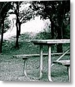 Picnic Blues  Metal Print by Sheldon Blackwell