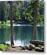 Picnic By The Lake Metal Print