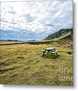 Picnic On Another Planet Metal Print