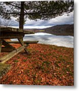 Picnic On The Lake Metal Print