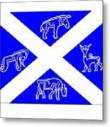 Pictish Scotland Flag Metal Print