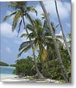 Picture Perfect Paradise Metal Print