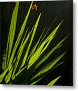 Piercing Green Metal Print
