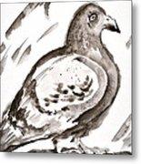 Pigeon I Sumi-e Style Metal Print