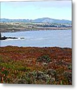 Pigeon Point Bay Metal Print