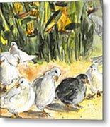 Pigeons In Benidorm Metal Print