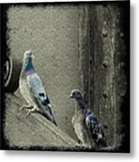 Pigeons In Damask Metal Print