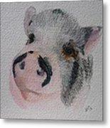 Piggy Pet Portraits Original Watercolor Memorial Made To Order Metal Print