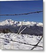 Pikes Peak Through The Fence Metal Print