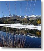Pikes Peak Through The Grass Metal Print